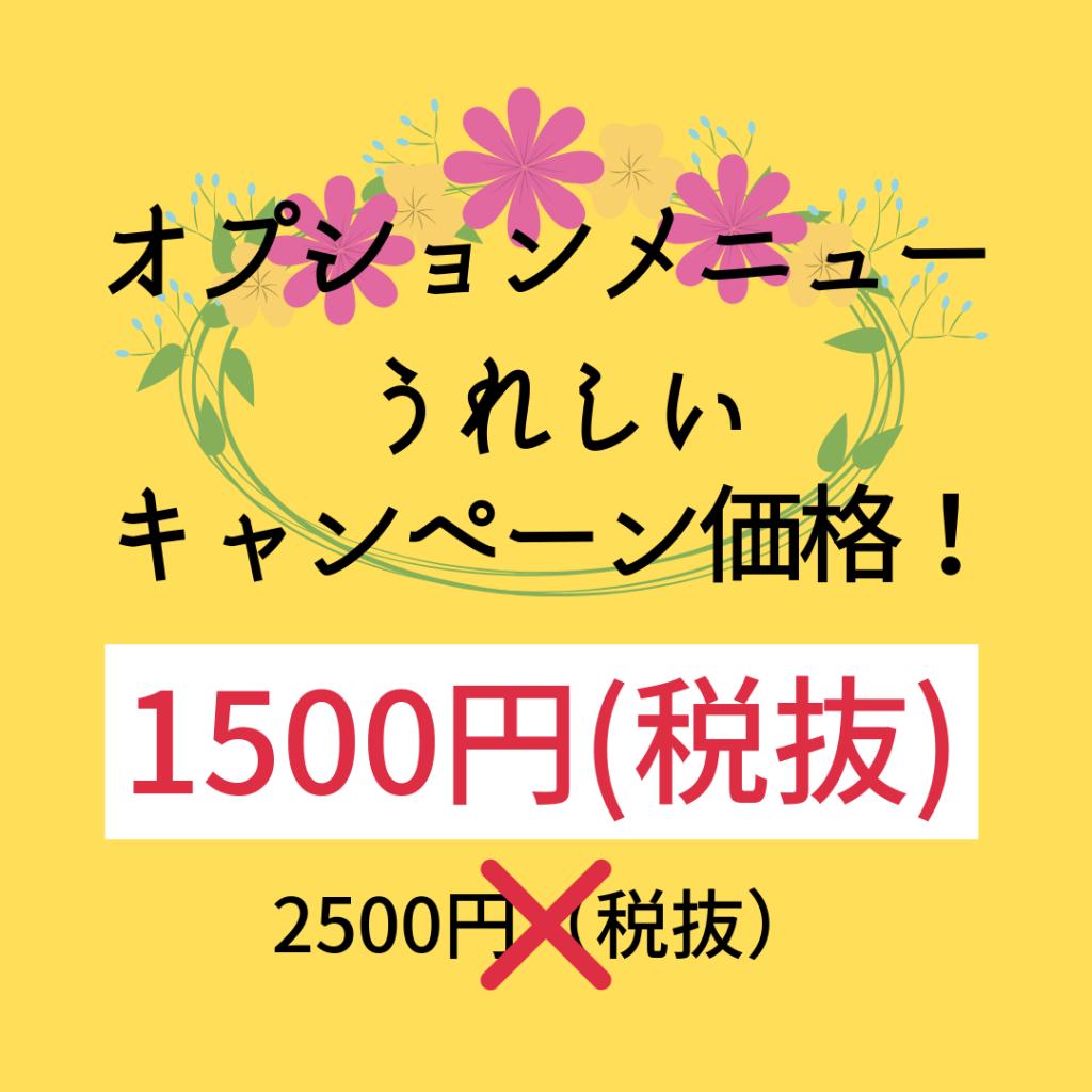 オプションメニュー うれしいキャンペーン価格 2500円(税抜)が1500円(税抜)に